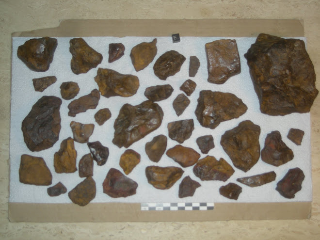 METEORITES INCONNUES OU ROCHES MARTIENNES
